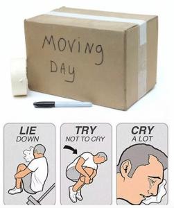 crying day moving meme