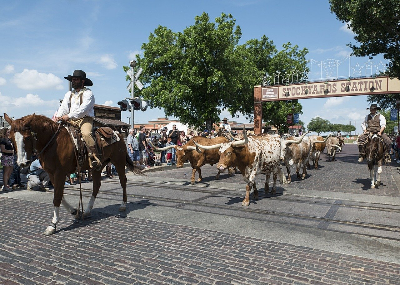 A New Resident's Quick Guide to Fort Worth